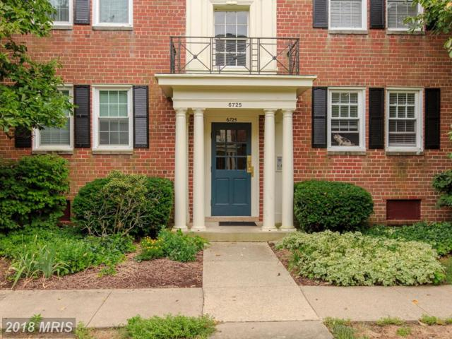 6725 Wakefield Drive C2, Alexandria, VA 22307 (#FX10304768) :: Green Tree Realty