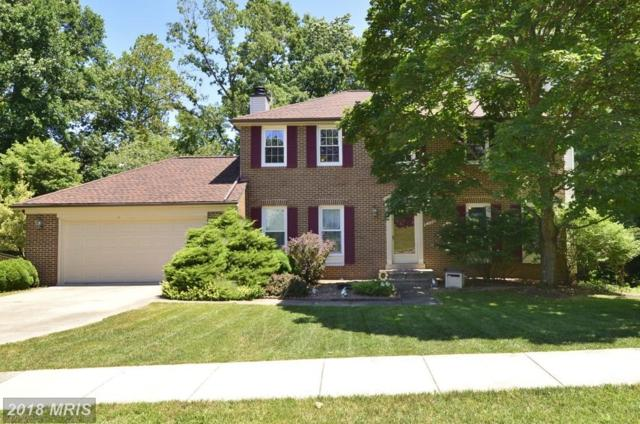 8304 Timber Brook Lane, Springfield, VA 22153 (#FX10307372) :: Bob Lucido Team of Keller Williams Integrity
