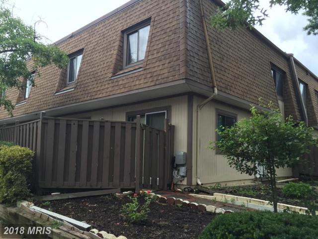 3906 Manzanita Place B, Alexandria, VA 22309 (#FX10308070) :: Pearson Smith Realty