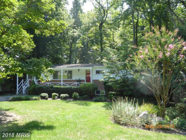 7206 Calamo Street, Springfield, VA 22150 (#FX10310172) :: Colgan Real Estate