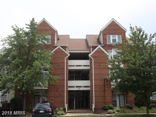 6974-F Ellingham Circle #78, Alexandria, VA 22315 (#FX10310241) :: The Greg Wells Team