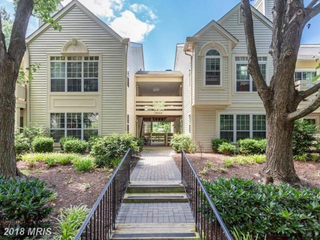 2224 Springwood Drive 102B, Reston, VA 20191 (#FX10310535) :: RE/MAX Executives