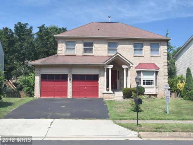 13605 Clary Sage Drive, Chantilly, VA 20151 (#FX10313103) :: Bob Lucido Team of Keller Williams Integrity
