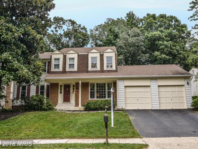 7003 Petunia Street, Springfield, VA 22152 (#FX10314640) :: Bob Lucido Team of Keller Williams Integrity