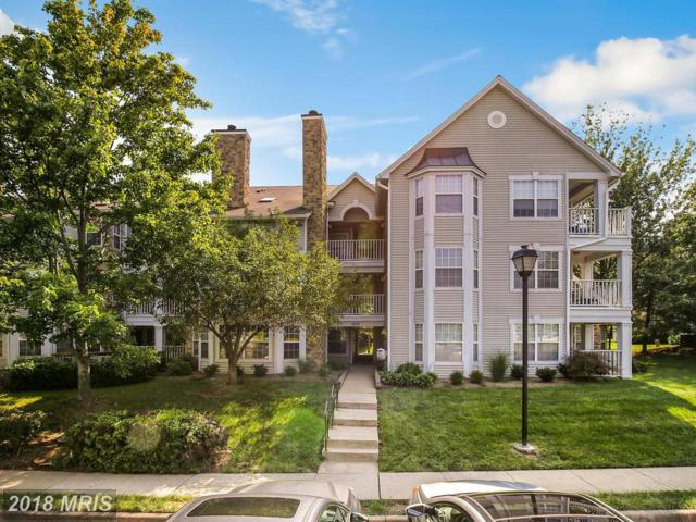 5632 Willoughby Newton Drive #34, Centreville, VA 20120 (#FX10315670) :: SURE Sales Group