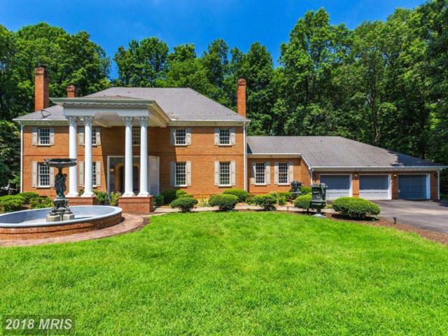 10924 Crossview Drive, Great Falls, VA 22066 (#FX10318864) :: Great Falls Great Homes