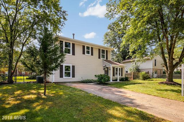 4011 Novar Drive, Chantilly, VA 20151 (#FX10333767) :: The Bob & Ronna Group