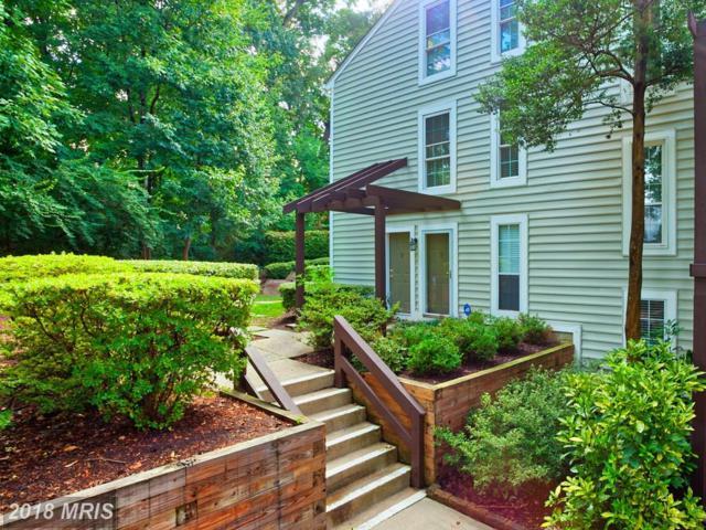 10198 Oakton Terrace Road, Oakton, VA 22124 (#FX10335822) :: Keller Williams Pat Hiban Real Estate Group