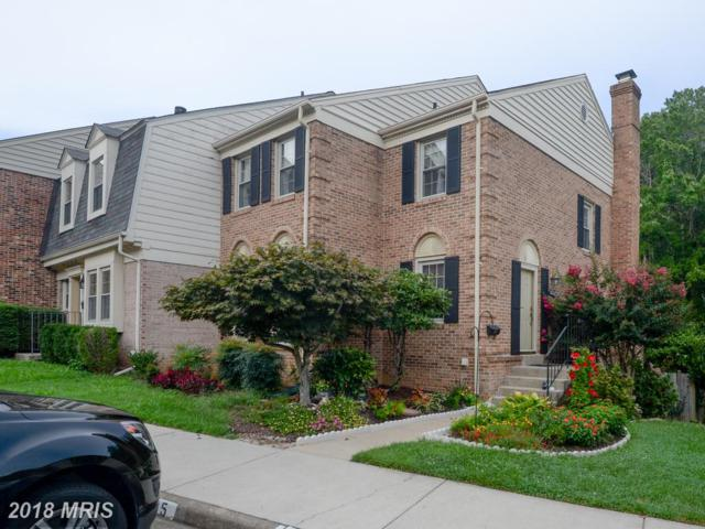 5441 Cheshire Meadows Way, Fairfax, VA 22032 (#FX10344096) :: RE/MAX Executives