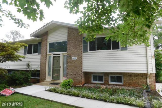 6807 Barnack Drive, Springfield, VA 22152 (#FX10346262) :: Colgan Real Estate