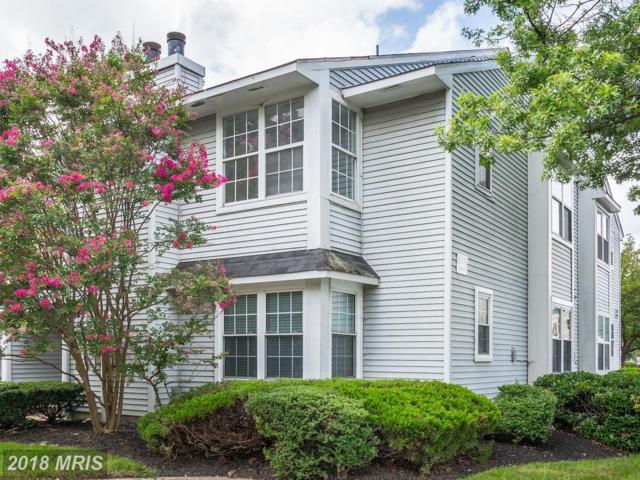 5376 Bedford Terrace 76D, Alexandria, VA 22309 (#FX9012326) :: RE/MAX Executives
