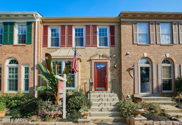 6109 Summer Park Lane, Alexandria, VA 22315 (#FX9012903) :: Pearson Smith Realty