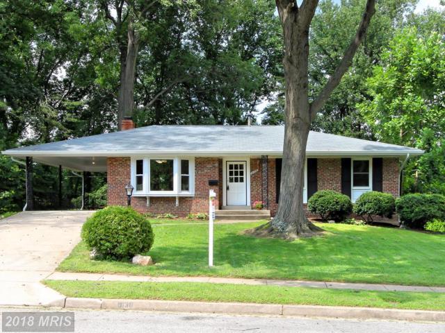 8138 Carr Place, Springfield, VA 22152 (#FX9014386) :: Tom & Cindy and Associates