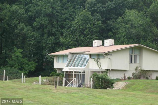 9994 Blackberry Lane, Great Falls, VA 22066 (#FX9678186) :: LoCoMusings