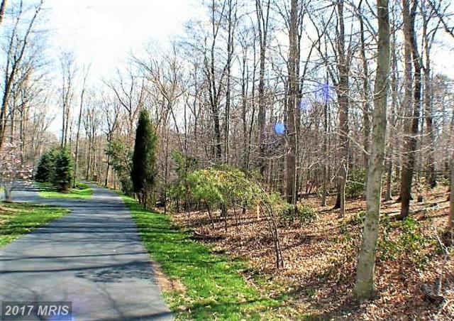12980 Wyckland Drive, Clifton, VA 20124 (#FX9840400) :: LoCoMusings