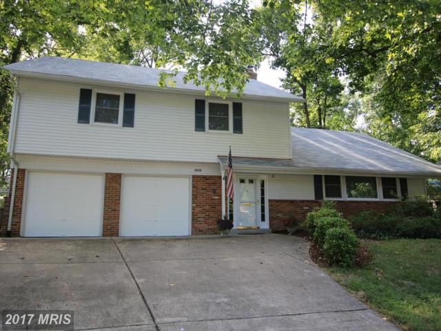 8608 Cherry Valley Lane, Alexandria, VA 22309 (#FX9853385) :: Pearson Smith Realty