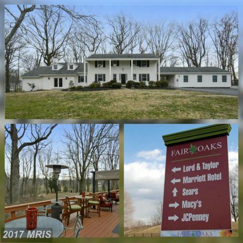 11641 Pine Tree Drive, Fairfax, VA 22033 (#FX9874866) :: LoCoMusings