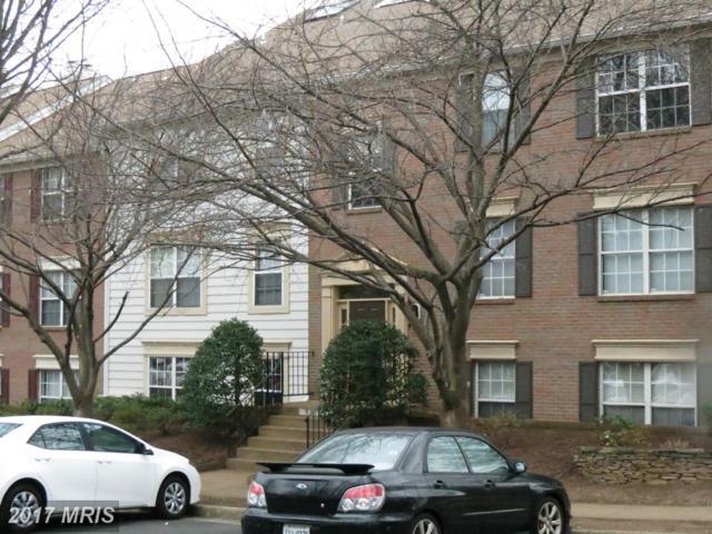 12105 Green Leaf Court 101-75, Fairfax, VA 22033 (#FX9897928) :: LoCoMusings