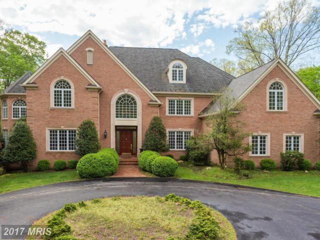 12994 Wyckland Drive, Clifton, VA 20124 (#FX9925828) :: LoCoMusings