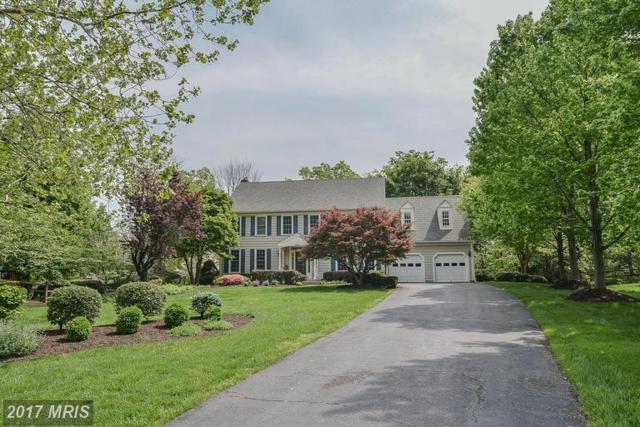 15623 Meherrin Drive, Centreville, VA 20120 (#FX9929884) :: LoCoMusings
