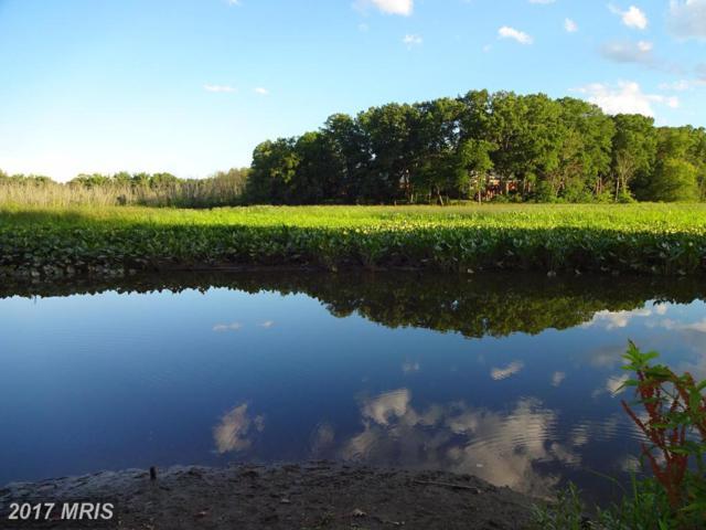 2736 Carter Farm Court, Alexandria, VA 22306 (#FX9935626) :: LoCoMusings