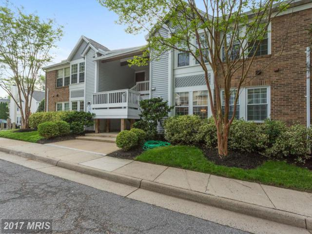 3429 Lakeside View Drive 15-3, Falls Church, VA 22041 (#FX9938170) :: Pearson Smith Realty