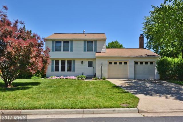 5479 Braddock Ridge Drive, Centreville, VA 20120 (#FX9949977) :: LoCoMusings
