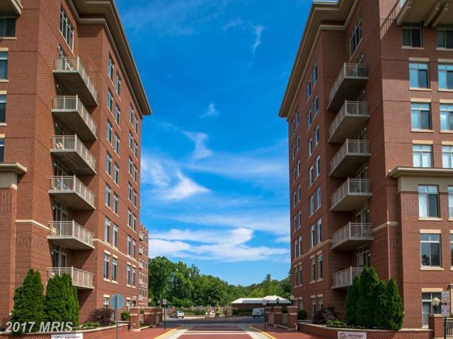 4490 Market Commons Drive #313, Fairfax, VA 22033 (#FX9951960) :: LoCoMusings