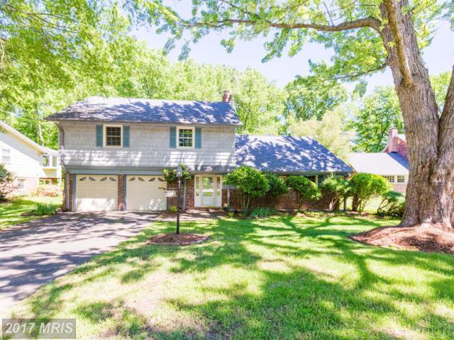 3106 Little Creek Lane, Alexandria, VA 22309 (#FX9952143) :: Pearson Smith Realty