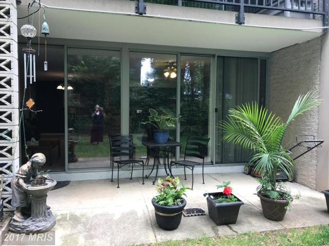 4420 Briarwood Court N #1, Annandale, VA 22003 (#FX9957625) :: Pearson Smith Realty