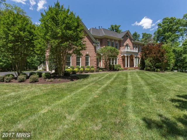 15620 Jillians Forest Way, Centreville, VA 20120 (#FX9966488) :: Wilson Realty Group