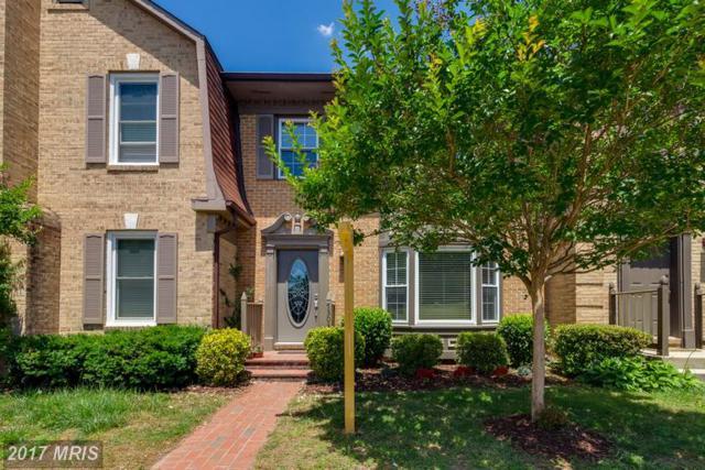 7303 Mallory Lane, Alexandria, VA 22315 (#FX9970686) :: Browning Homes Group