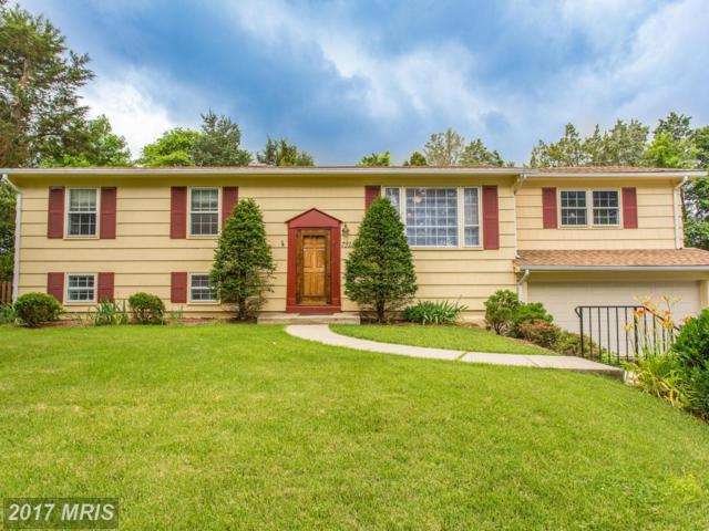 7918 Bayberry Drive, Alexandria, VA 22306 (#FX9973969) :: The Gus Anthony Team