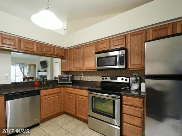 3407 Lakeside View Drive 18-2, Falls Church, VA 22041 (#FX9976279) :: LoCoMusings