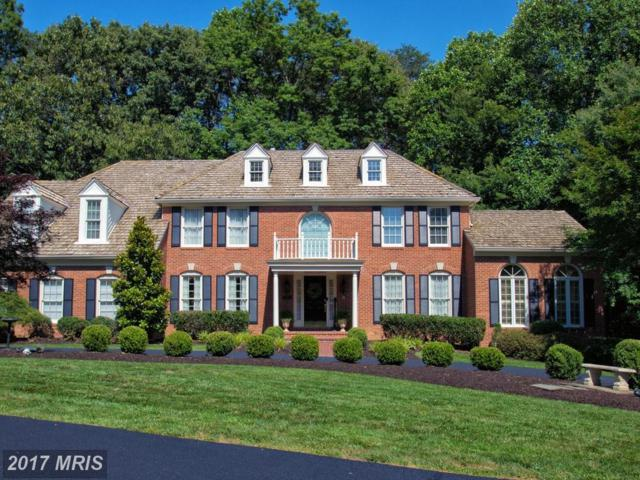 6311 Pohick Station Drive, Fairfax Station, VA 22039 (#FX9977201) :: LoCoMusings