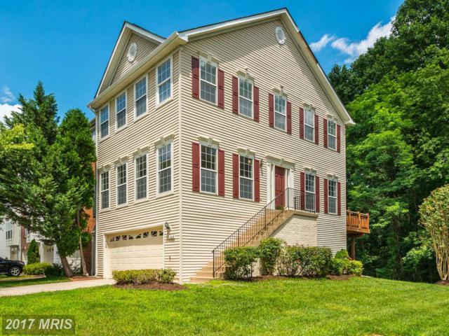4663 Buckhorn Ridge, Fairfax, VA 22030 (#FX9977267) :: Circadian Realty Group