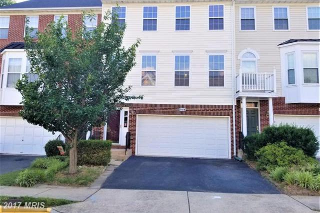 5168 Ballycastle Circle, Alexandria, VA 22315 (#FX9978019) :: Browning Homes Group