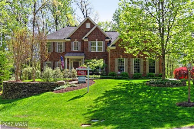 7401 Beckwith Lane, Clifton, VA 20124 (#FX9978930) :: Browning Homes Group