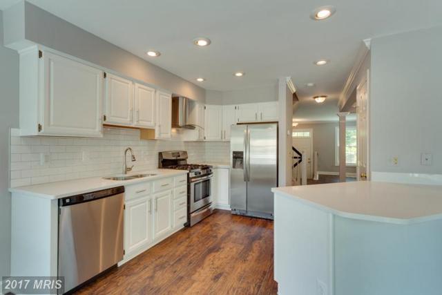 7439 Heatherfield Lane, Alexandria, VA 22315 (#FX9981579) :: Browning Homes Group