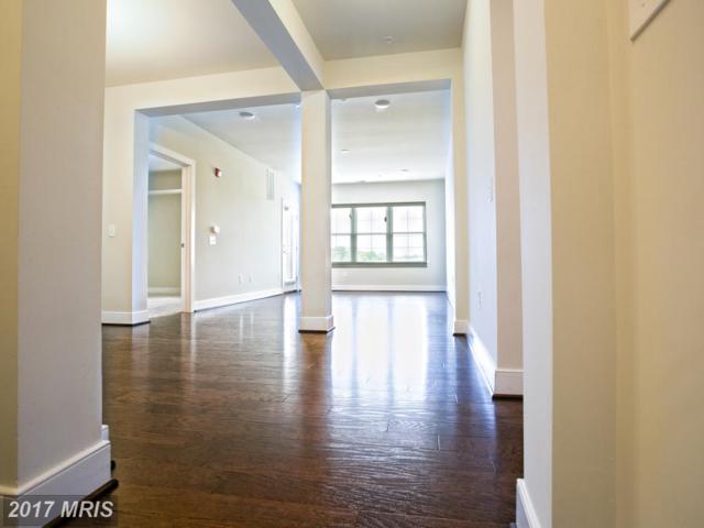2903 Bleeker Street 5-303, Fairfax, VA 22031 (#FX9985490) :: Pearson Smith Realty