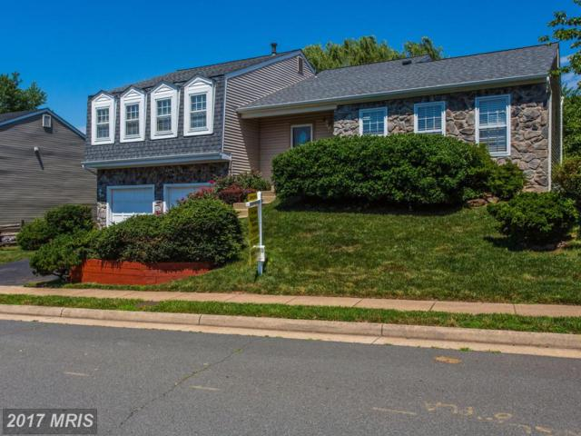 5520 Buggy Whip Drive, Centreville, VA 20120 (#FX9986129) :: Pearson Smith Realty
