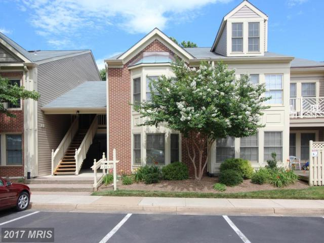 12012 Ridge Knoll Drive 608A, Fairfax, VA 22033 (#FX9987360) :: Circadian Realty Group