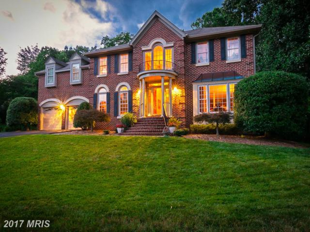 15290 Surrey House Way, Centreville, VA 20120 (#FX9990718) :: LoCoMusings