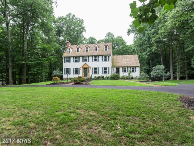 12101 Beaver Creek Road, Clifton, VA 20124 (#FX9994758) :: Pearson Smith Realty