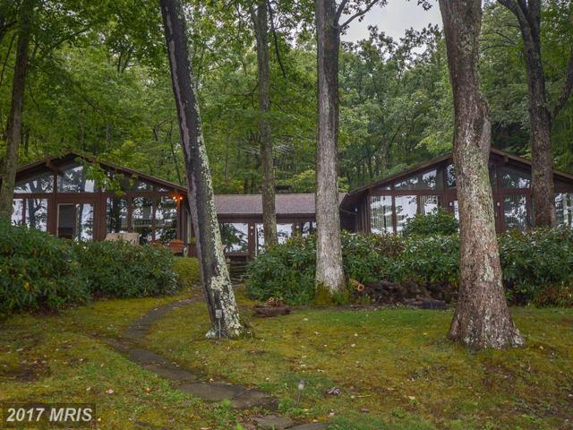 3135 Turkey Neck Road, Swanton, MD 21561 (#GA10050307) :: Pearson Smith Realty