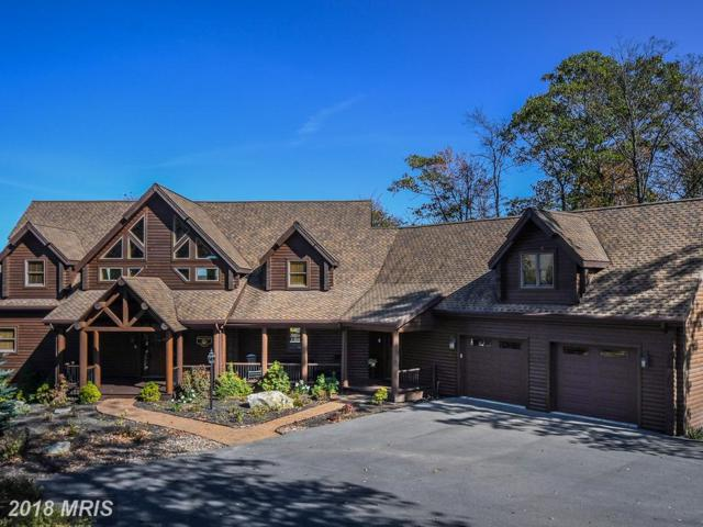 40 Mountain Overlook Court, McHenry, MD 21541 (#GA10090116) :: The Bob & Ronna Group