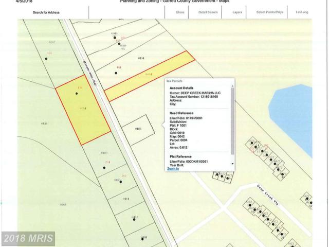 158 Marsh Hill Road, McHenry, MD 21541 (#GA10290301) :: Bob Lucido Team of Keller Williams Integrity