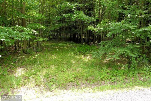 Westview Crossing Road, Grantsville, MD 21536 (#GA8705153) :: LoCoMusings