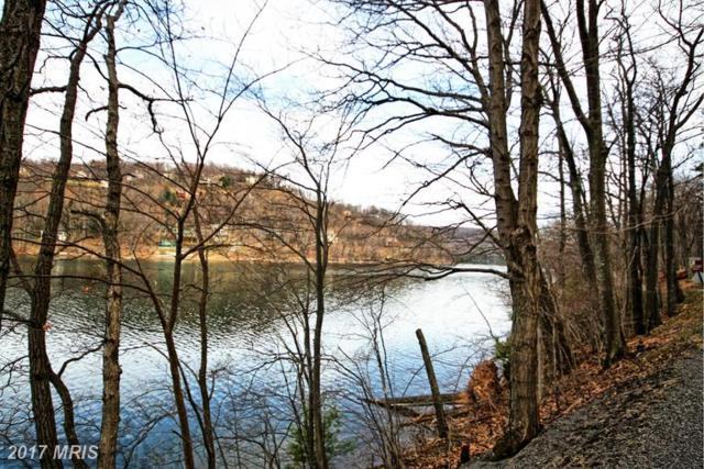 State Park Road, Swanton, MD 21561 (#GA9611908) :: Pearson Smith Realty