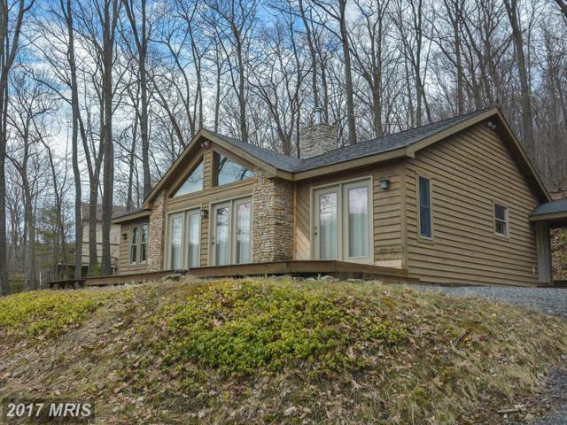 2432 State Park Road, Swanton, MD 21561 (#GA9909925) :: Pearson Smith Realty